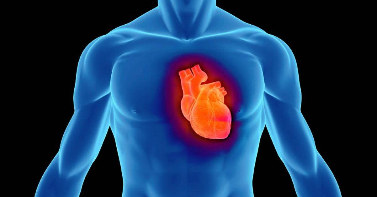 Смерть от сердечной недостаточности — Сердце