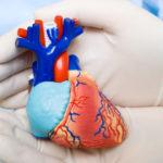 Сердечная патология