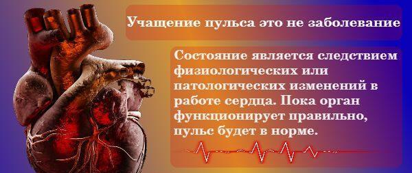 Изображение - Что означает высокий пульс при нормальном давлении puls47-e1533573510835