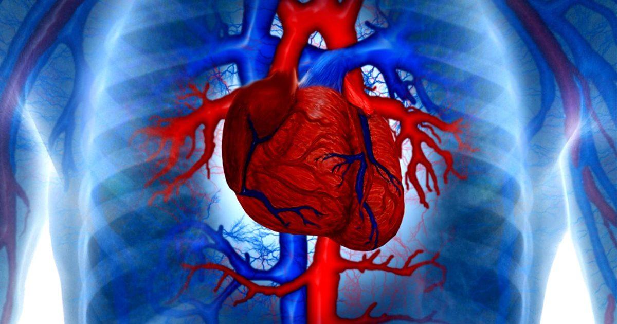 Чем опасна тахикардия сердца у женщин и лечение