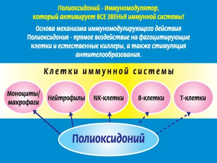 Действие Полиоксидония
