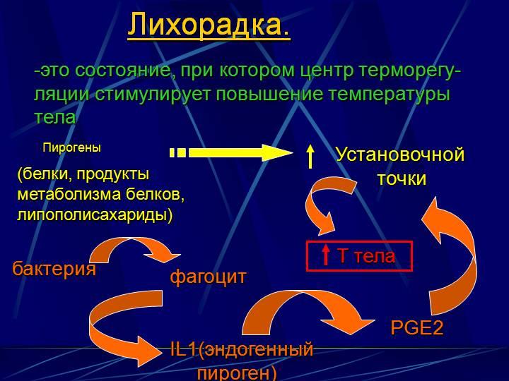 Механизм развития лихорадки