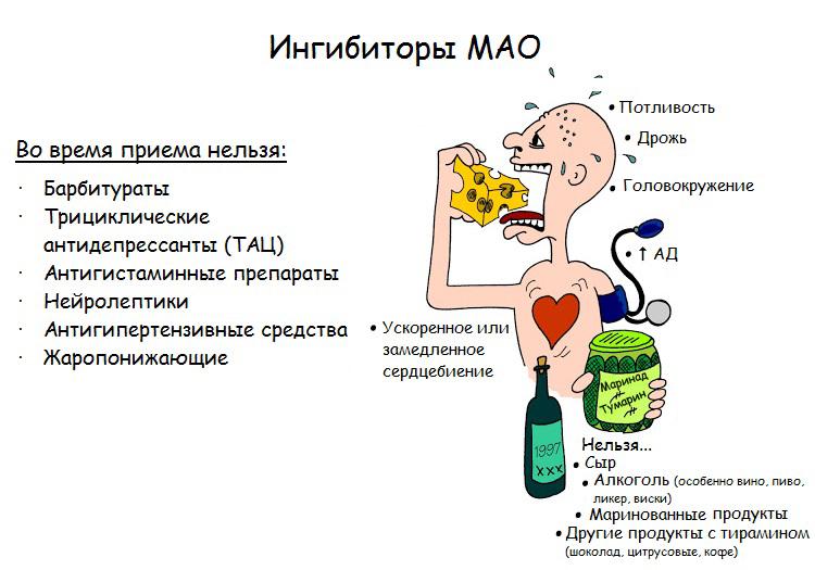 Ингибиторы моноаминоксидазы (МАО)