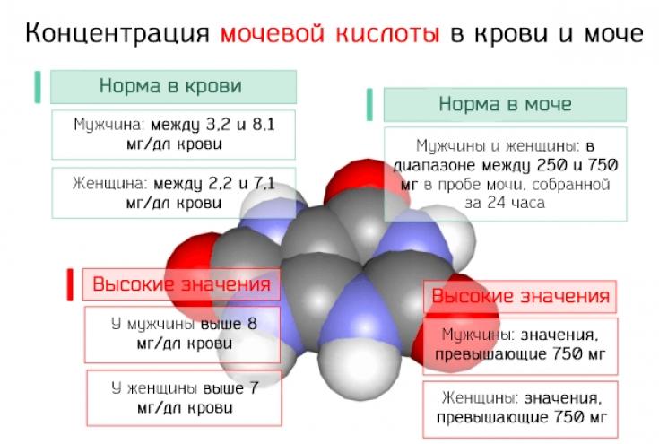Норма содержания мочевой кислоты