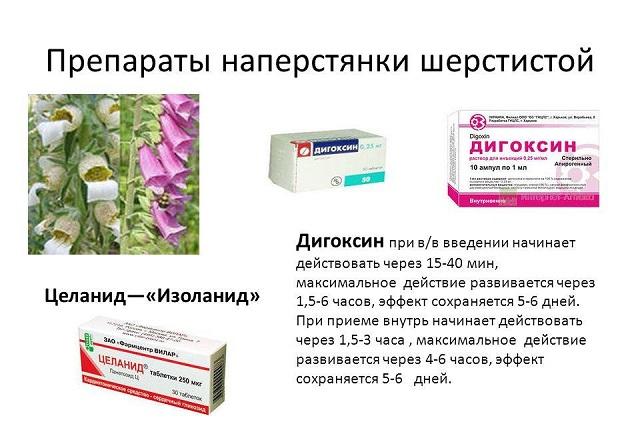 Препараты наперстянки