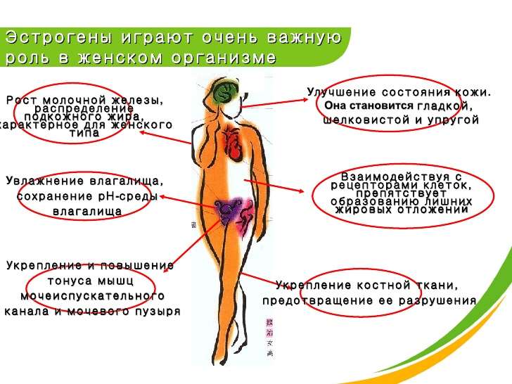 Влияние гормонов на организм