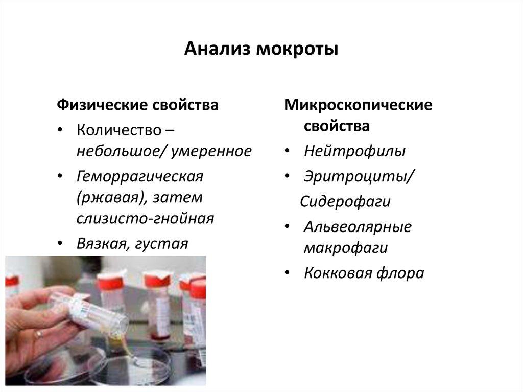 Анализ мокроты