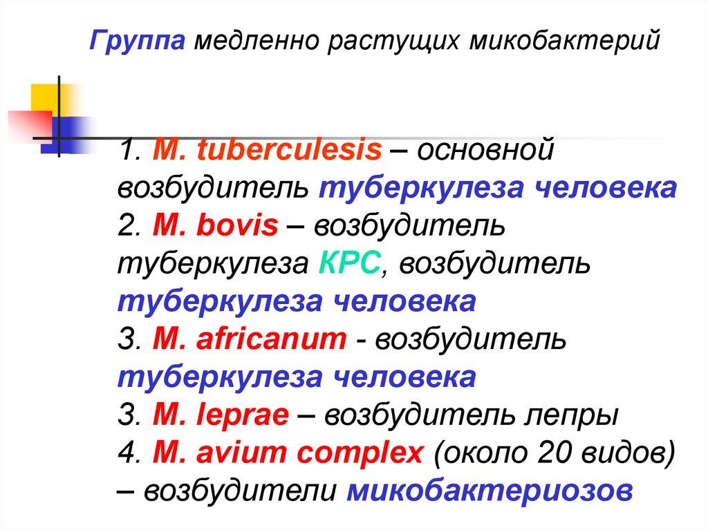 Виды микобактерий