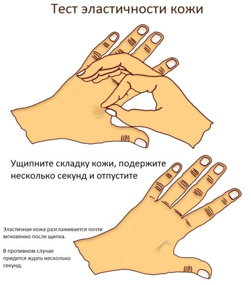 Эластичность кожи