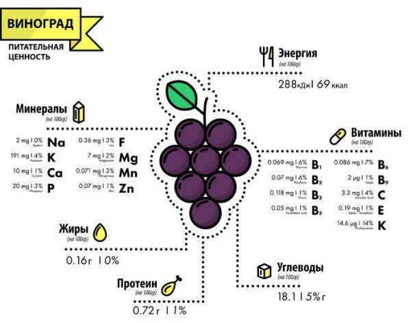 Питательная ценность винограда