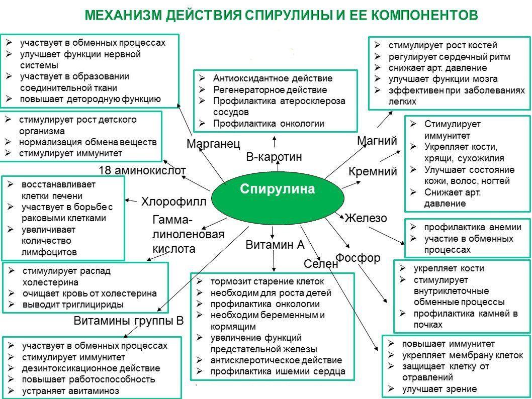 Механизм действия спирулины