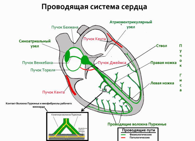 Схема 1