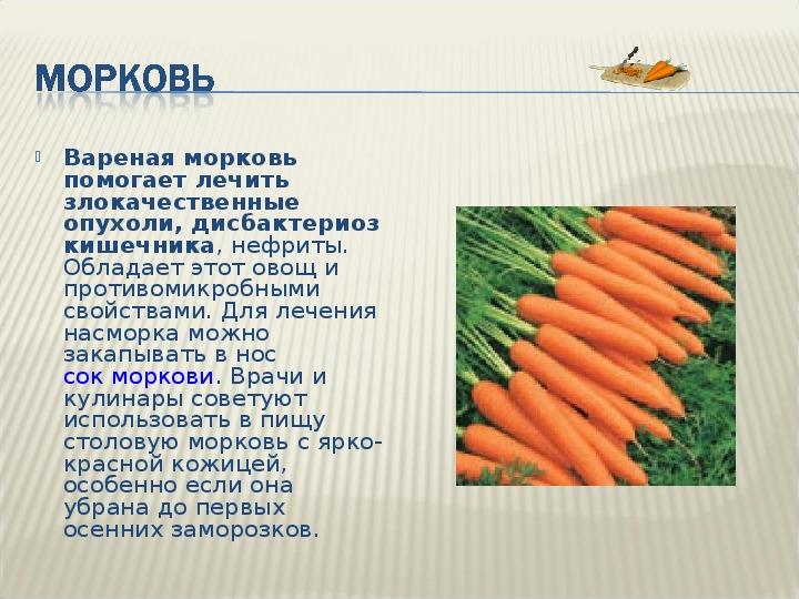 Польза вареного овоща