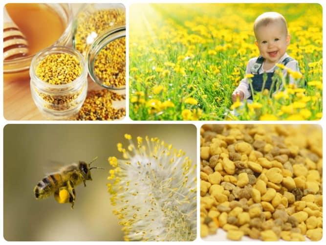 Дети и мед