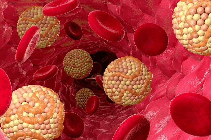 Вредные шарики в крови