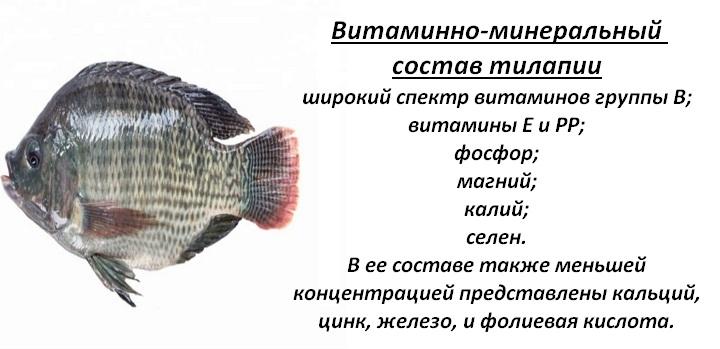 Витаминный состав рыбы