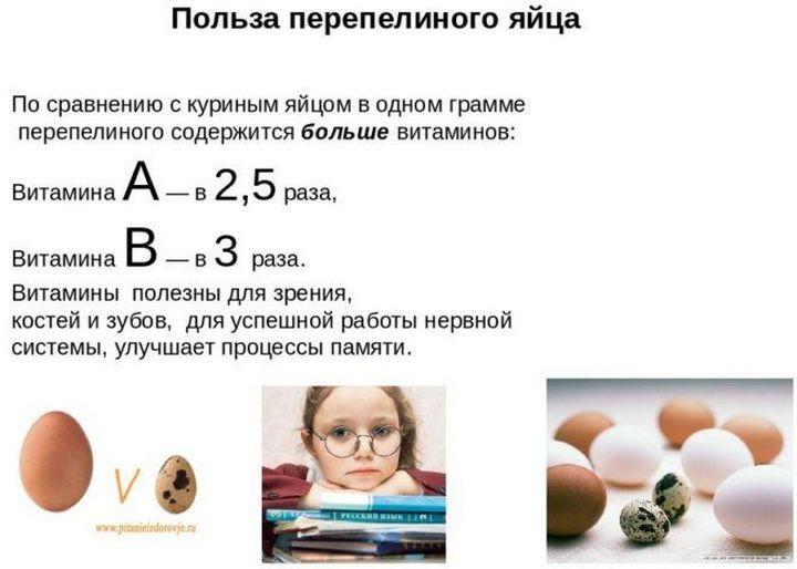 Польза в каждом яйце