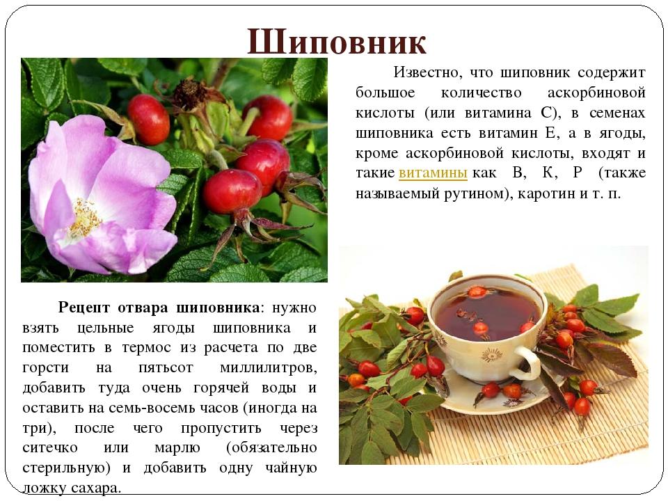 Цветы и чашка