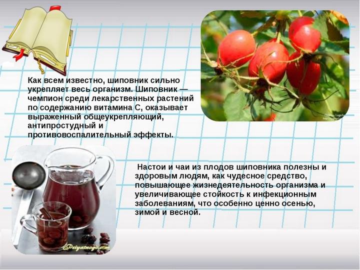Здоровье в чашке