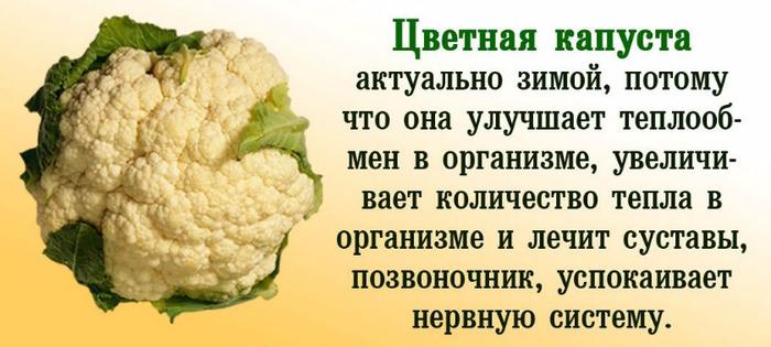Кладезь витаминов и минералов
