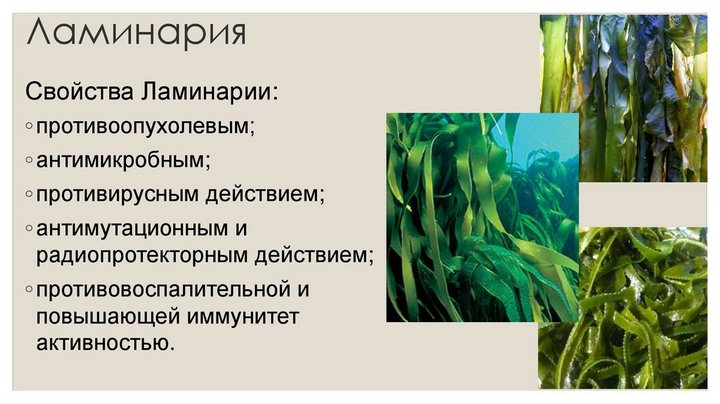 Польза подводного блюда