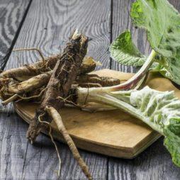 Корни трав для здоровья