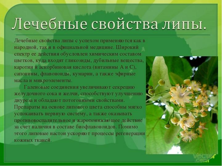 Полезные растения