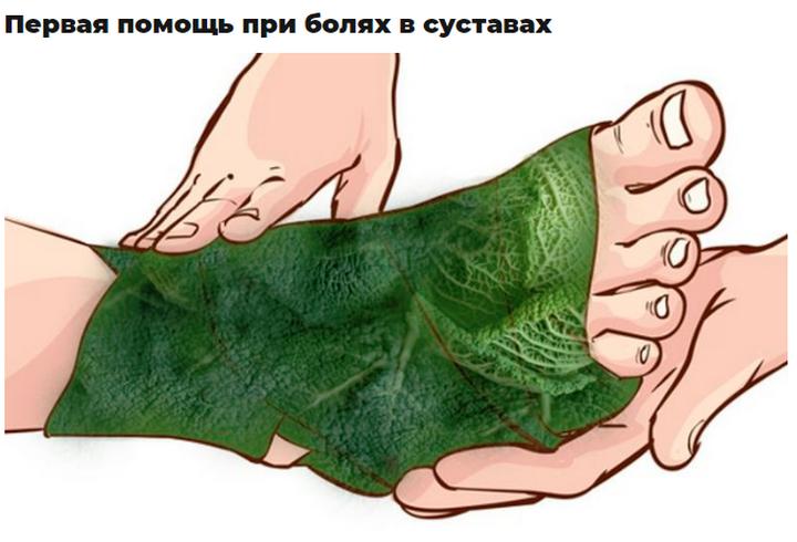 Использование листьев