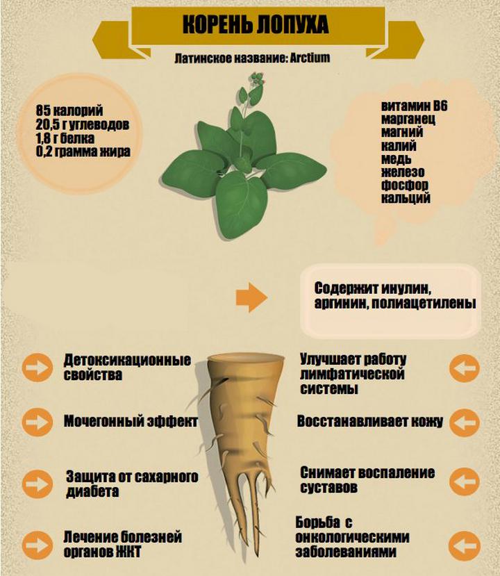 Медицинские компоненты