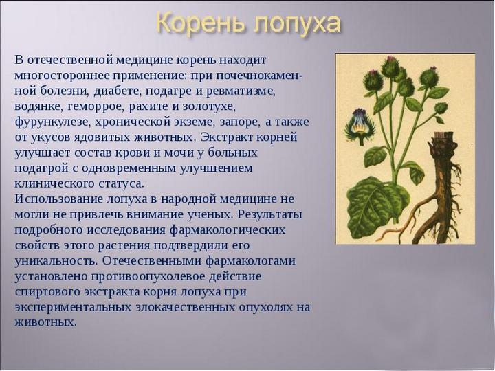 Применение корней