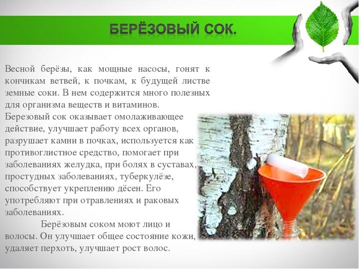 Сок из дерева