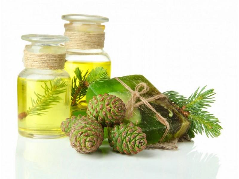 Пихтовое масло — лечебные свойства и применение в народной медицине