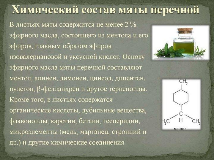 Компоненты растения
