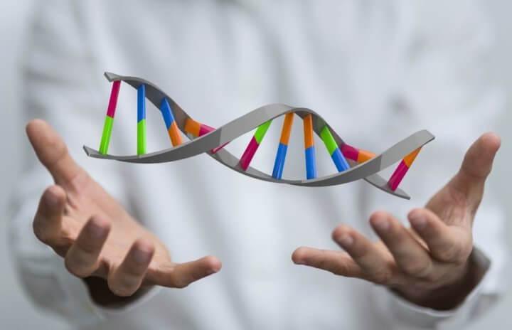 ДНК в руках